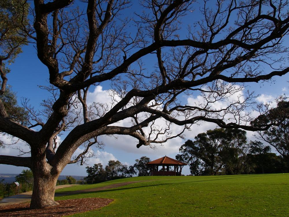 King's Park and Botanic Garden