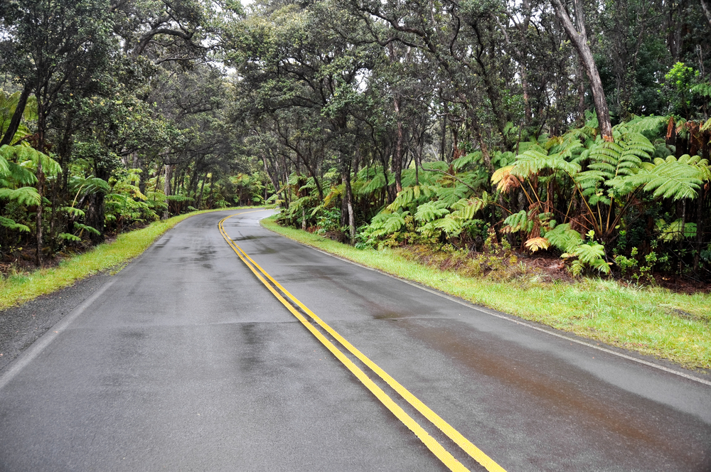 Chain of Craters Road, Hawaii Volcanoes National Park, USA
