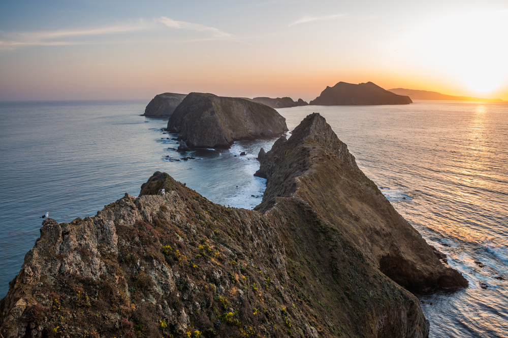 OROGOLD-cant-miss-national-parks-in-california-Channel-Islands