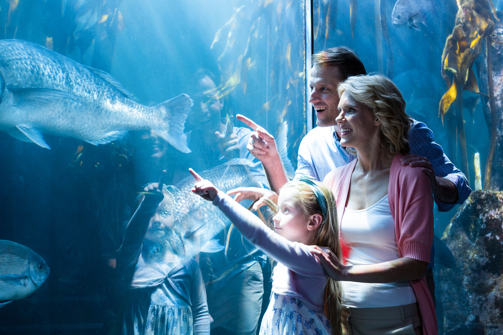 Family at aquarium