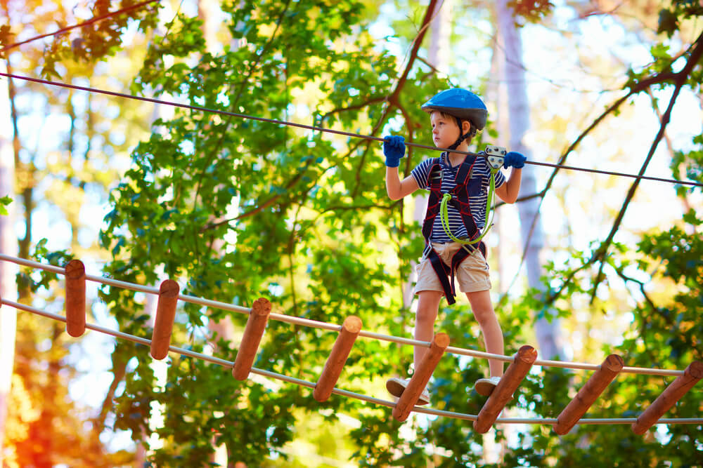 Little boy having fun at adventure park
